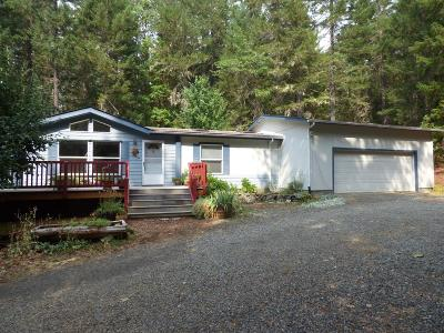 Jackson County, Josephine County Single Family Home For Sale: 8690 Caves Highway
