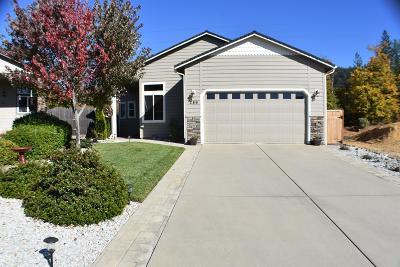 Jackson County, Josephine County Single Family Home For Sale: 289 Cedar Ridge Drive