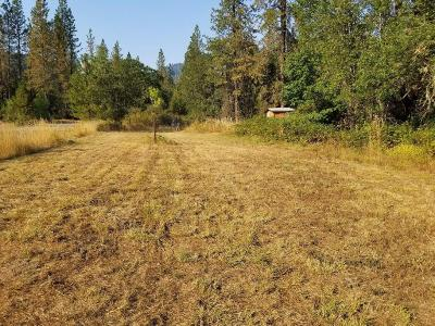 Josephine County Single Family Home For Sale: 1311 Sunny Valley Loop