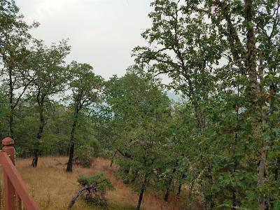 Grants Pass Single Family Home For Sale: 2951 Harbeck Road
