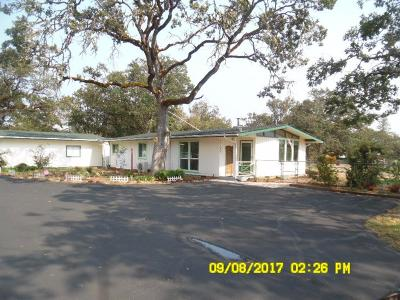 Central Point Single Family Home For Sale: 11162 Duggan Road