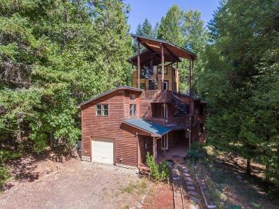 Wolf Creek Single Family Home For Sale: 4505 Coyote Creek Road