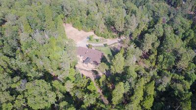 Rogue River Single Family Home For Sale: 600 Savage Creek Road