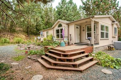 Rogue River Single Family Home For Sale: 374 Sykes Creek Road