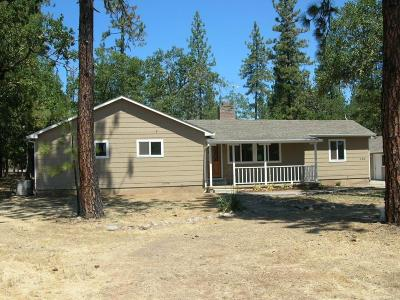 Jackson County, Josephine County Single Family Home For Sale: 525 Rogue Air Drive
