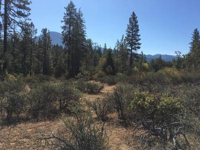 Josephine County Residential Lots & Land For Sale: 4481 Waldo Road