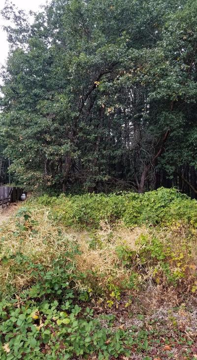 Residential Lots & Land For Sale: 345 Noahs Way