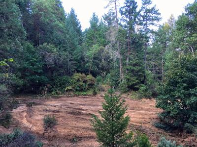 Josephine County Residential Lots & Land For Sale: 13395 Redwood Highway