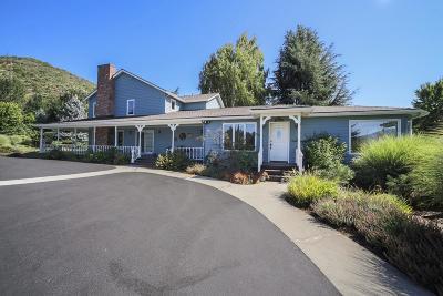 Applegate Single Family Home For Sale: 16289 N Applegate Road