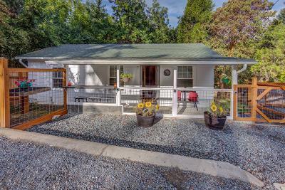 Jacksonville Single Family Home For Sale: 1060 S 3rd Street