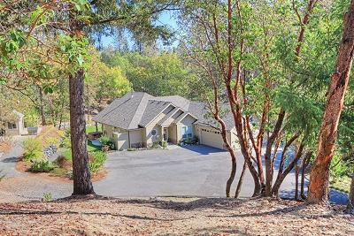 Grants Pass Single Family Home For Sale: 511 Honeycutt Dr
