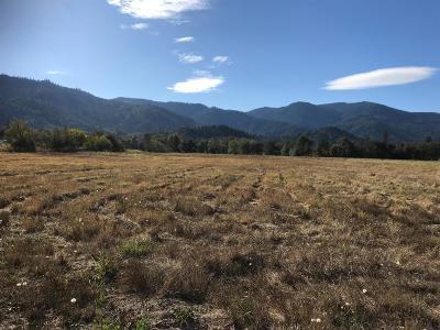 Rogue River Farm For Sale: 6547 E Evans Creek Road