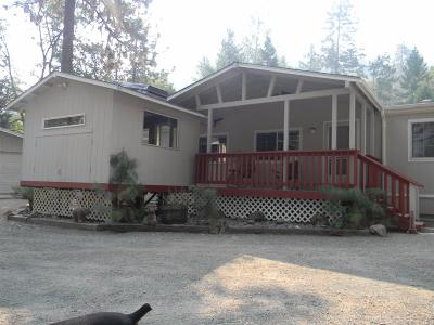 Grants Pass Single Family Home For Sale: 5243 Rogue River Highway