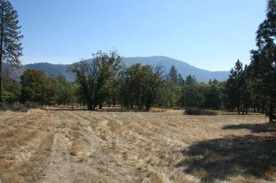 Josephine County Residential Lots & Land For Sale: 9165 Monument Drive