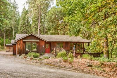 talent Single Family Home For Sale: 8909 Yank Gulch Road