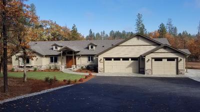 Josephine County Single Family Home For Sale: 1330 Falcon Crest Lane