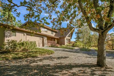 Medford Single Family Home For Sale: 3808 Dark Hollow Road