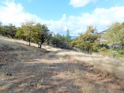 Jackson County, Josephine County Residential Lots & Land For Sale: 200 Wren Ridge Drive