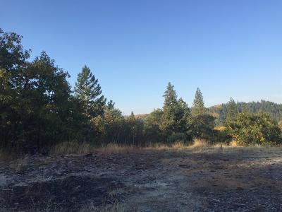 Grants Pass Residential Lots & Land For Sale: 455 Humberd Lane