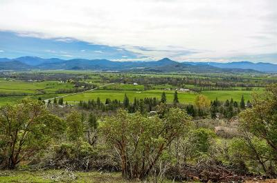 Jackson County, Josephine County Residential Lots & Land For Sale: 1207 Overlook Drive