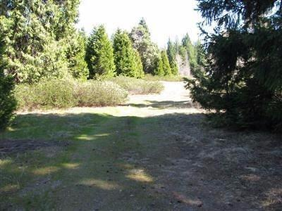 Jackson County, Josephine County Residential Lots & Land For Sale: 221 Mill Creek Drive
