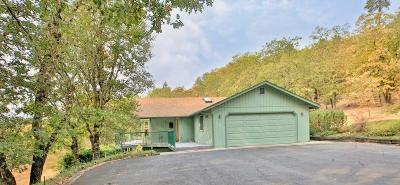 Grants Pass Single Family Home For Sale: 4810 Williams Highway