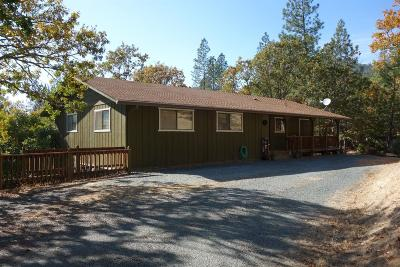 Rogue River Single Family Home For Sale: 400 Tenney Drive