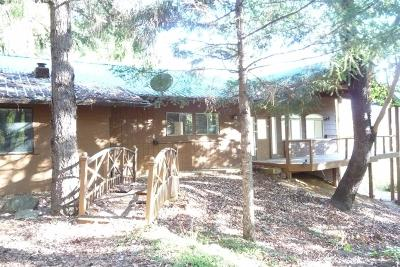 Rogue River Single Family Home For Sale: 2595 E Evans Creek Road