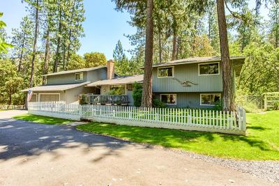Jackson County, Josephine County Single Family Home For Sale: 7930 Upper Applegate Road