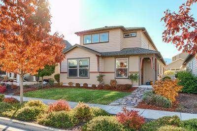 Ashland Single Family Home For Sale: 356 Stoneridge Avenue
