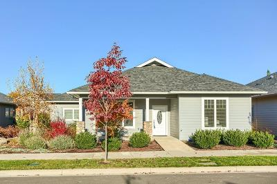 Central Point Single Family Home For Sale: 1320 N Haskell Street
