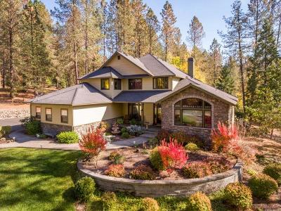 Josephine County Single Family Home For Sale: 1068 Placer Road