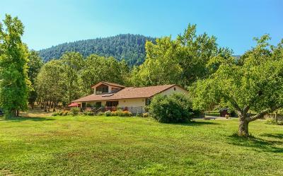 Murphy Single Family Home For Sale: 700 Murphy Creek Road
