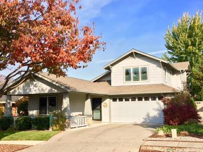 Ashland Single Family Home For Sale: 469 Williamson Way