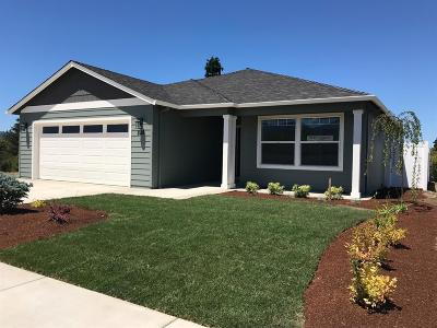 Medford Single Family Home For Sale: 640 Nobility Drive