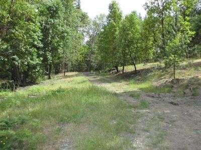 Josephine County Residential Lots & Land For Sale: 235 Needlewood Drive