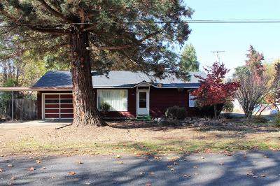 Eagle Point Single Family Home For Sale: 218 S Platt Avenue