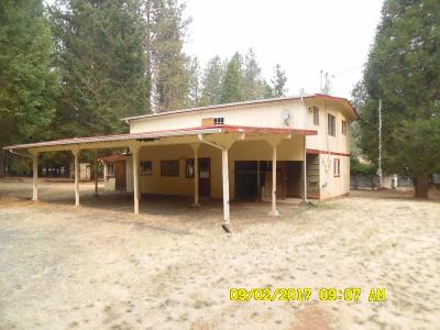 Rogue River Single Family Home For Sale: 1627 Queens Branch Road