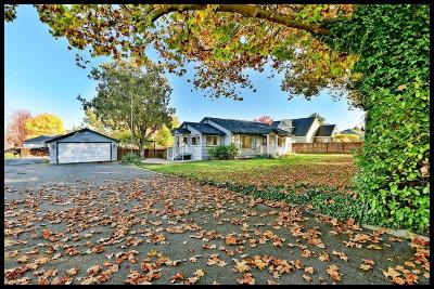 Central Point Single Family Home For Sale: 3832 Grant Road