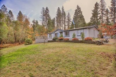 grants pass Single Family Home For Sale: 752 Pyle Drive
