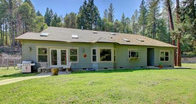 Rogue River Single Family Home For Sale: 4186 E Evans Creek Road
