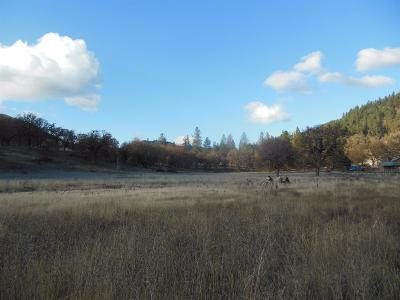 Rogue River Residential Lots & Land For Sale: E Evans Creek Road