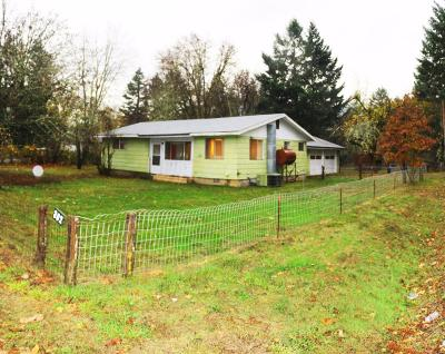 Cave Junction Single Family Home For Sale: 302 Kerby Avenue
