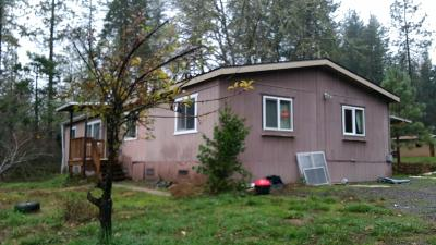 Rogue River Single Family Home For Sale: 14891 Hoerster Lane