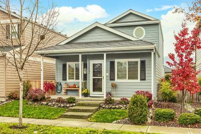 Central Point Single Family Home For Sale: 1127 Rustler Peak Street