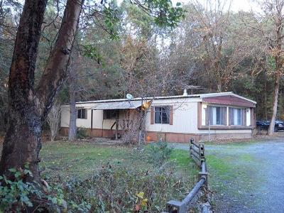 Jackson County, Josephine County Single Family Home For Sale: 1607 Foots Creek Road