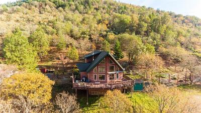Applegate Single Family Home For Sale: 1050 Humbug Creek Road