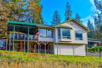 Merlin Single Family Home For Sale: 4590 Galice Road