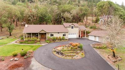 Grants Pass Single Family Home For Sale: 446 Riverbanks Road