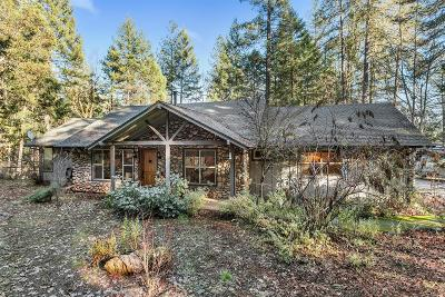 Josephine County Single Family Home For Sale: 761 Green Tree Loop